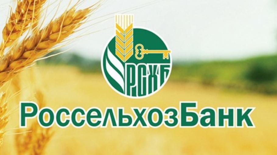 россельхозбанк владикавказ кредит наличными условия кредит сбербанк петербург